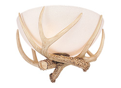 Antler Bowl Light Kit